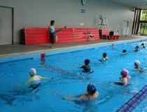 プール プログラム